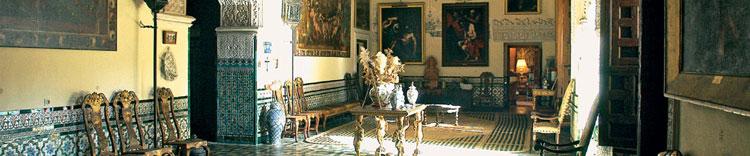 visita para conocer el palacio de dueñas en sevilla